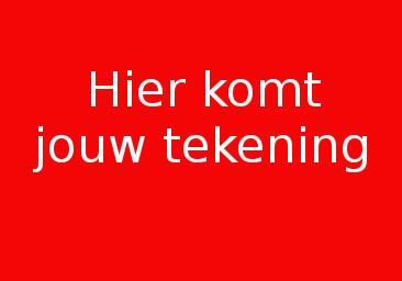 Sander van Mil
